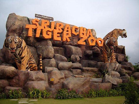 Тигровый парк в Тайланде
