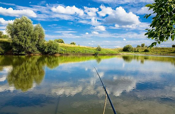Природа и рыбалка