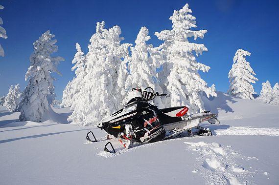 Зимний отдых на Карпатах