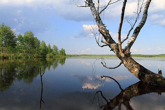 Чигиринское водохранилище отдых