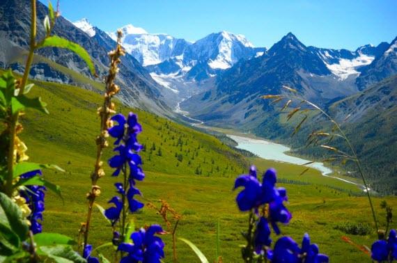 Экскурсия и путешествие по Алтаю