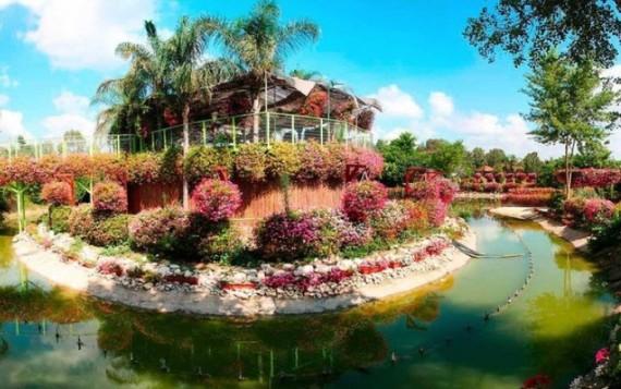 Парк Утопия в Израиле